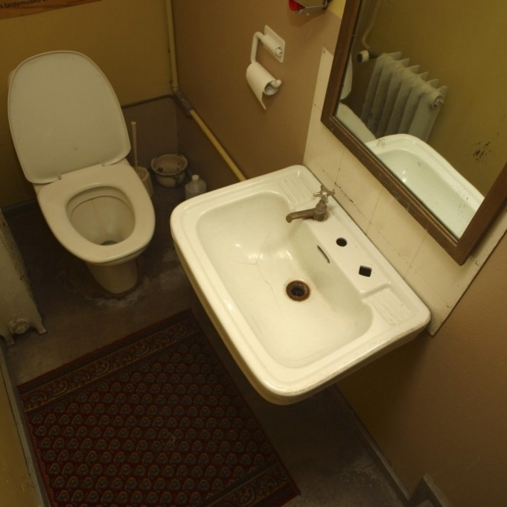 toilet sex eromax dk
